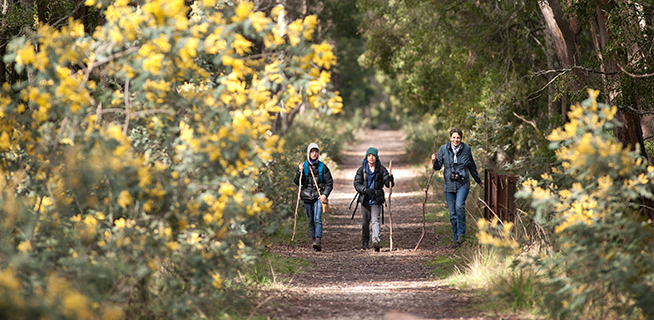 Conserving, educating & empowering: Victorian National Parks Association